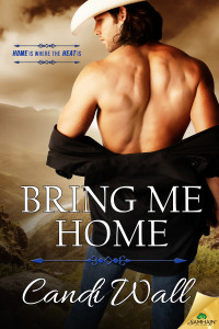 BookCover_BringMeHome